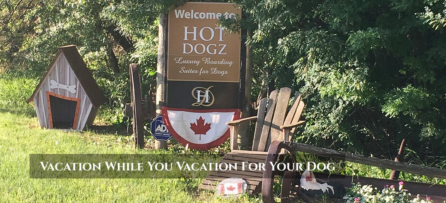 Hot Dogz